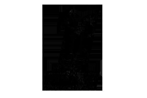 darkcustomlogo